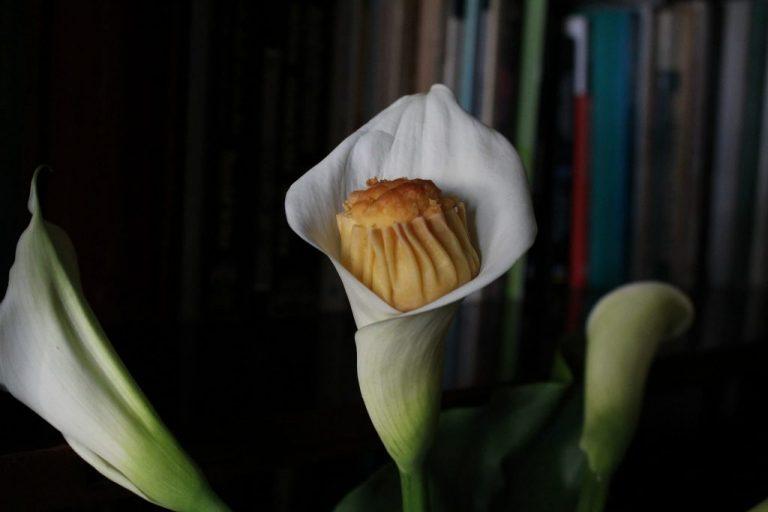 Πασχαλινά Γλυκά Τυροπιτάκια από την Τήνο: Γευστικά Κοσμήματα Διατροφικής Πολιτιστικής Κληρονομιάς, γράφει η Γιάννα