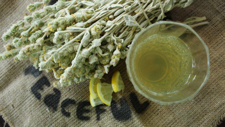 Φτιάξε δροσερό και τονωτικό τσάι της Εύβοιας με μέλι και λεμόνι… για το μπαλκόνι