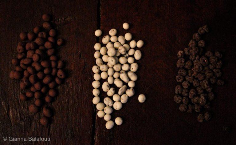 Golden Black – Κορινθιακή Σταφίδα Σκιάς με επικάλυψη Σοκολάτα λευκή, γάλακτος και υγείας.