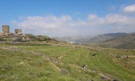 Ο μαγικός κύκλος της ζωής στο Tinos Food Paths 2019